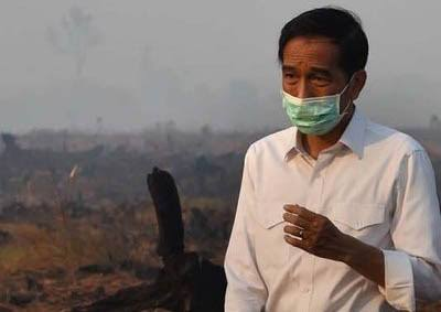 Pak Jokowi Punya Stok Masker 50 Juta, Apakah Disiapkan Buat Cucu ...